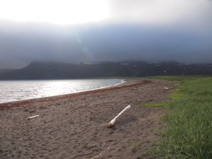The beach at Höfn